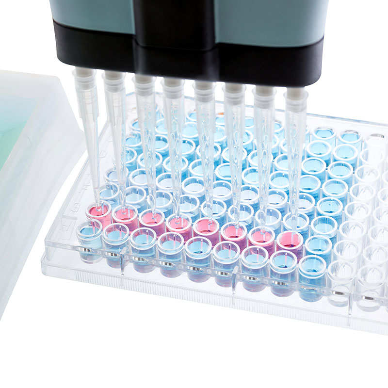 Hhub - PractiChrom D-Lactate Assay Kit